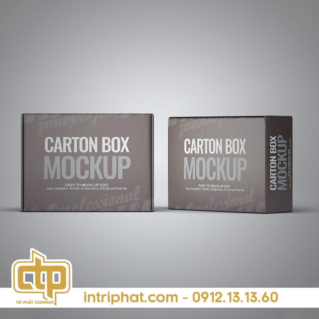 in thùng carton giá rẻ tphcm